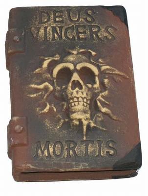 Piraten boek