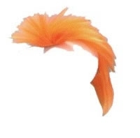 "Hanenkam  "" Oranje """