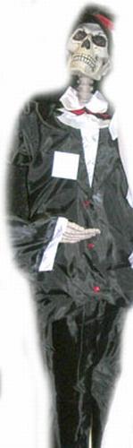 Staande skelet bruidegom