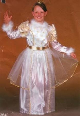 """Prinsessenjurk  """" Wit / goud """""""