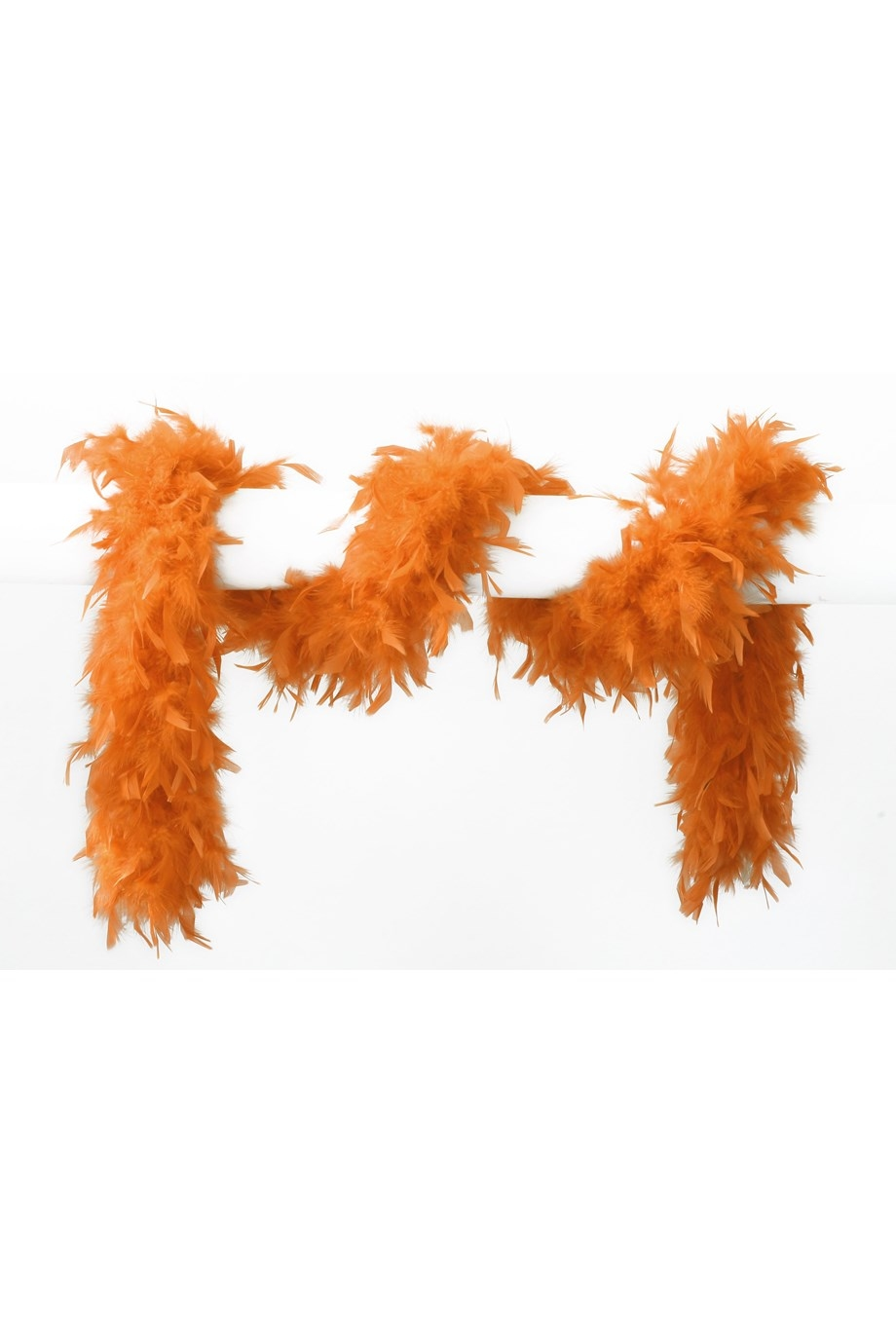 "Boa  "" Oranje """