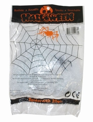 Spinnenweb met 1 spin