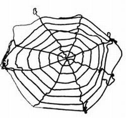 Spinnenweb zwart