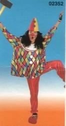Clowns kostuum geruit