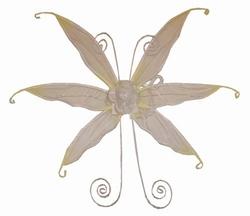 "Vleugels  "" Wit / geel """