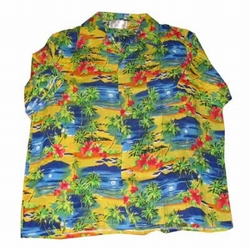 Hawaii blouse