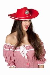 "Cowboyhoed  "" Sheriff "" groot"