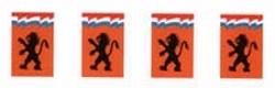 """Vlaggenlijn vierkant  """" Leeuw """"  10 meter"""