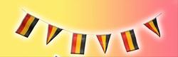 """Vlaggenlijn  """" België """""""
