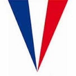 """Vlaggenlijn  """" Frankrijk """" Spit en vierkant"""