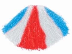 Cheerleader pompon