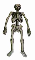 "Skelet glow in the dark  "" Klein """
